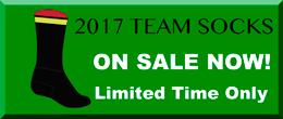 2017-TeamSocksWidgetAd-0